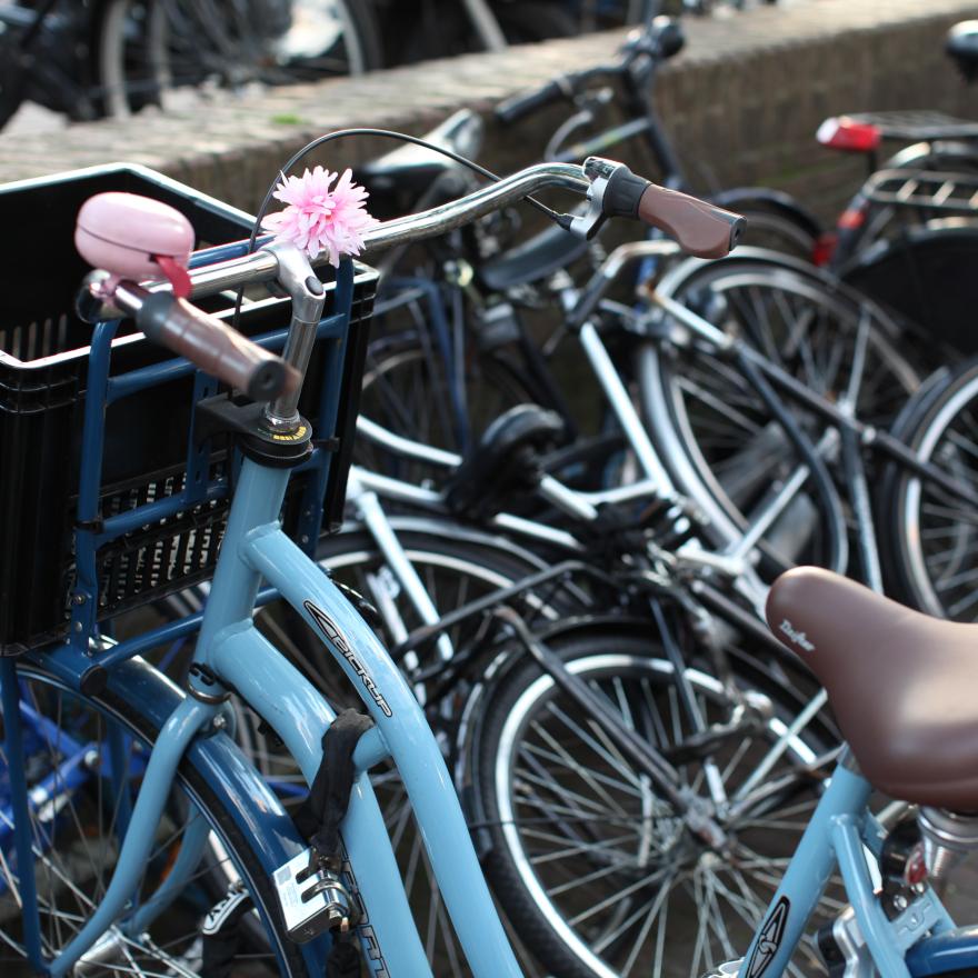 Amsterdam city guide image