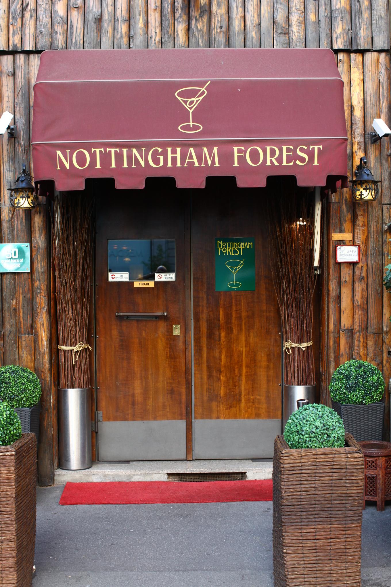 Nottingham Forest image 1