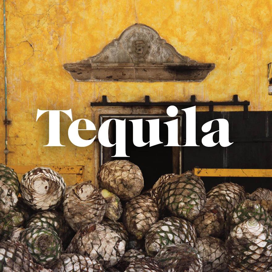 Tequila origins & history