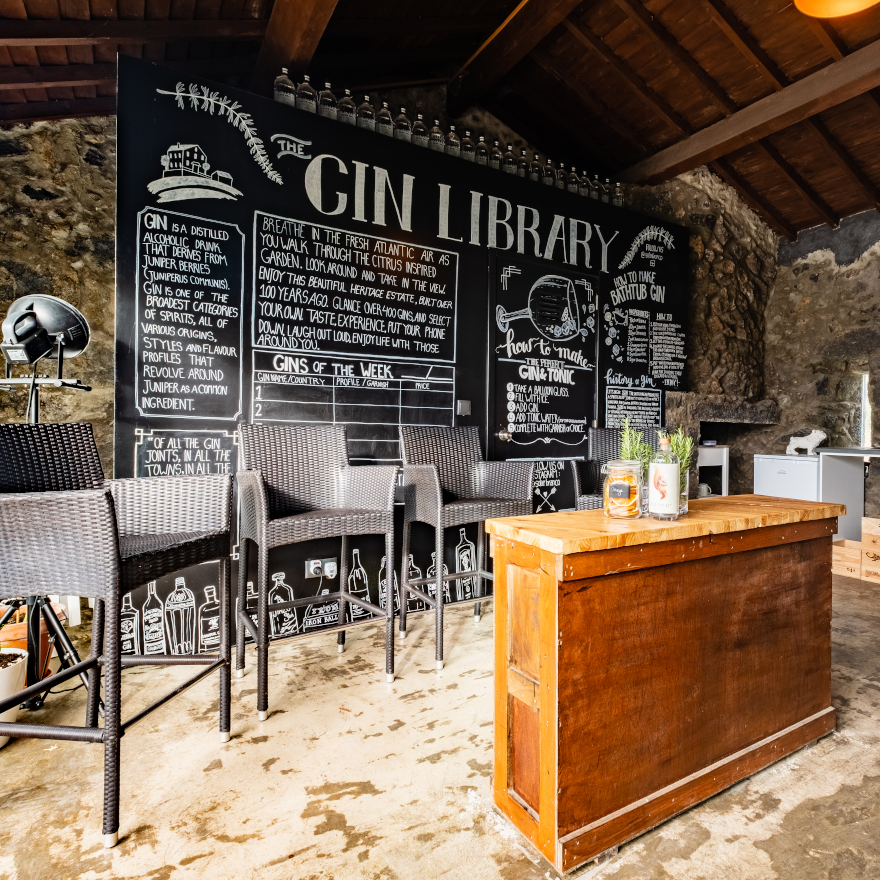 The Gin Library story image