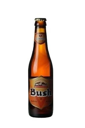 Dubuisson Bush Amber image