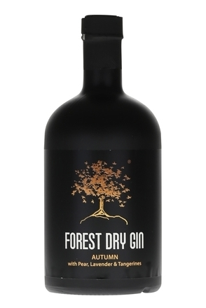 Forest Dry Gin Autumn image