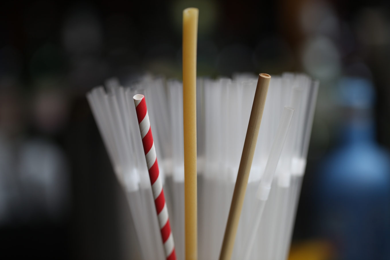 Straws - 10 alternatives to plastic straws image 1