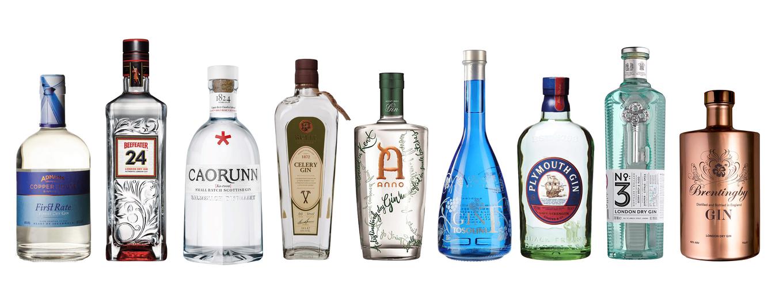 Os 20 melhores gins image 1