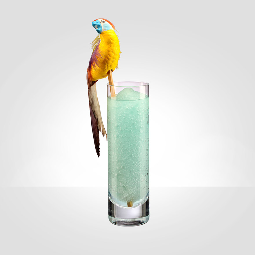 Today we're celebrating a Dead Parrot image
