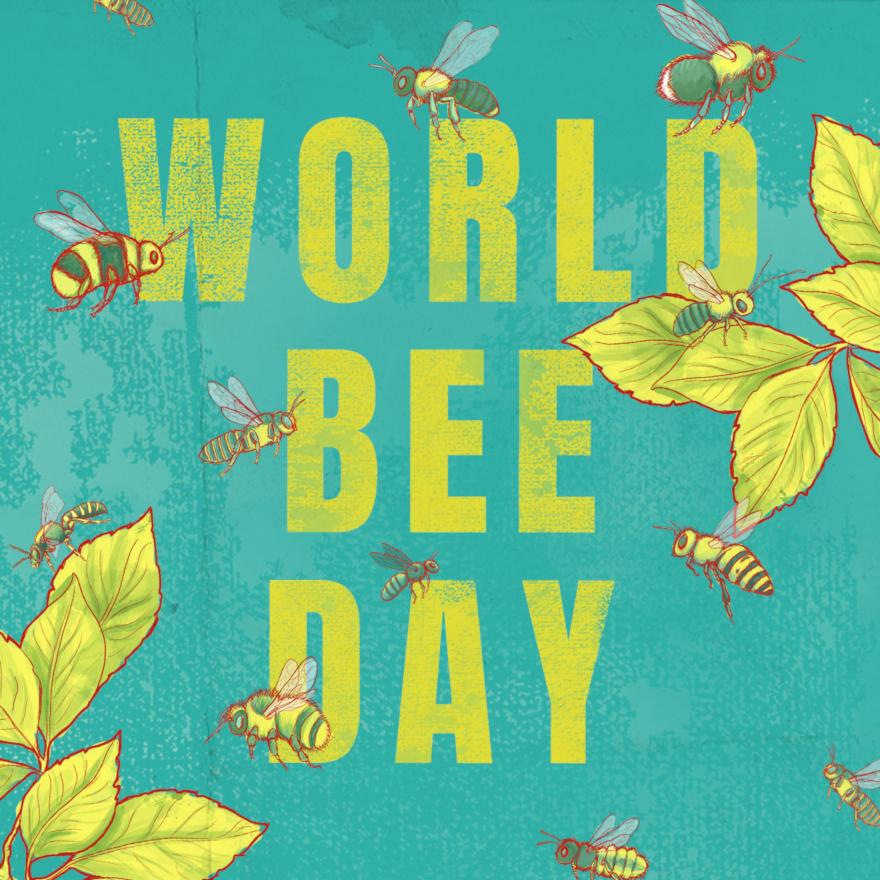 World Bee Day image