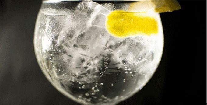 Gin College: Σεμινάριο για το gin image 1