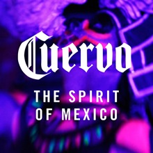 The Spirit of Mexico image