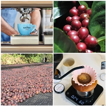 Introduction to coffee: Γευστική δοκιμή και σεμινάριο image