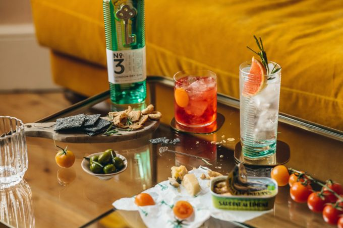 Buying Gin: A Home Bartender's Guide image 1