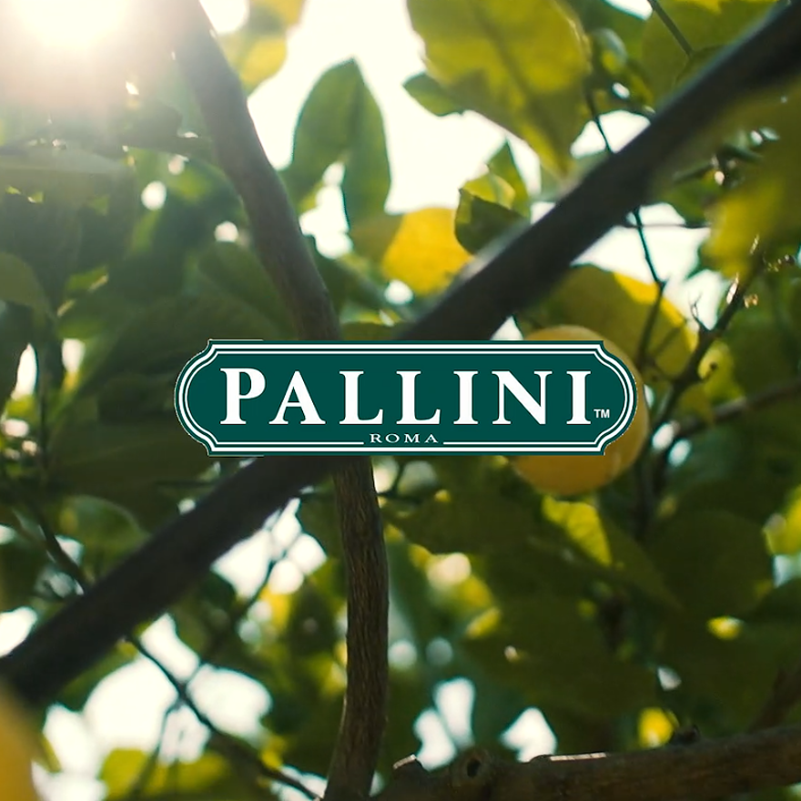 Pallini also make... image