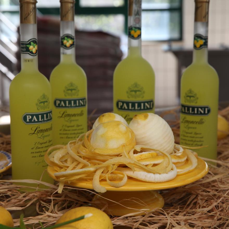 Story of Pallini image