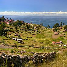 Peruvian pisco