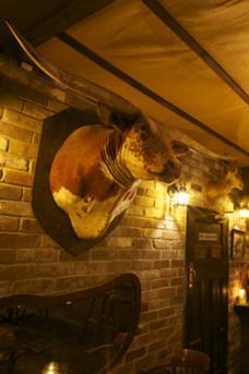 Shady Pines Saloon image