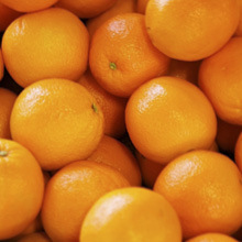 Orange & curaçao liqueurs