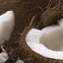 Cream of coconut image