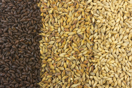 Barley Wine image 1
