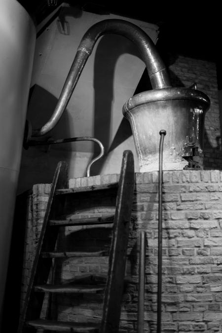 Nolet Distillery image 19
