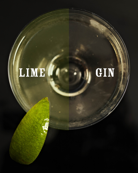 Gimlet cocktail image 1