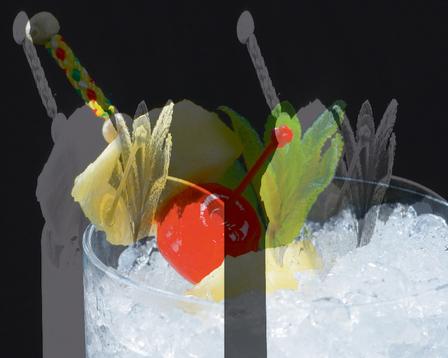 Garnishes for cocktails image 1