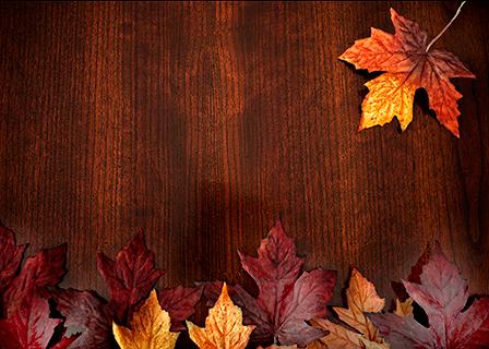 September Seasonal Ingredients image 1