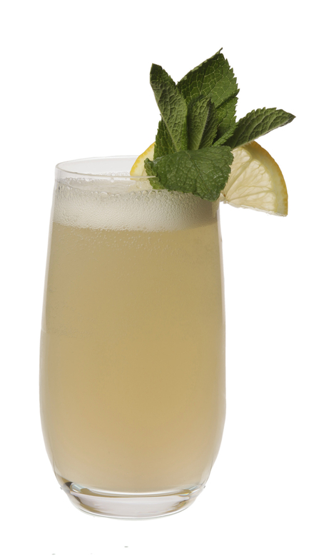 Elderflower Gin Fizz image