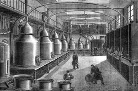 Absinthe history (part 1) - Origins of absinthe image 1