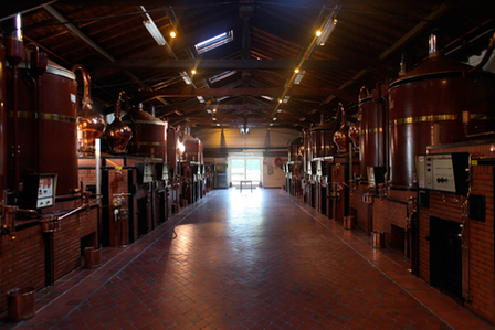 Cognac - How cognac is made and what from image 1