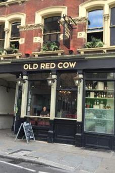 Old Red Cow image