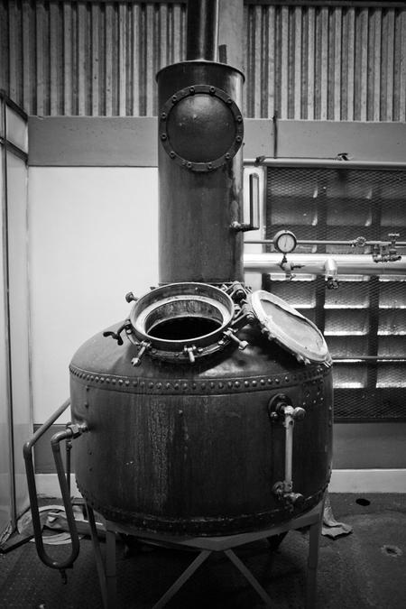 Destilerias Unidas S.A. (DUSA) - The Diplomatico Distillery image 20