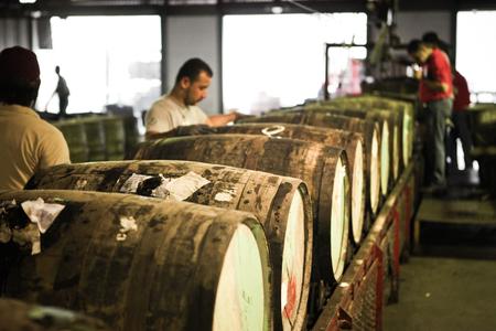 Destilerias Unidas S.A. (DUSA) - The Diplomatico Distillery image 24