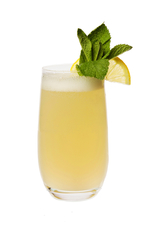New Orleans Gin Fizz