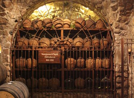 La Rojeña Distillery, Tequila Town (NOM: 1122) image 21