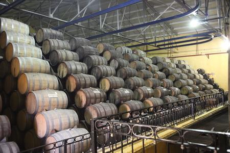 La Rojeña Distillery, Tequila Town (NOM: 1122) image 18
