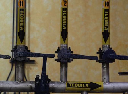 La Rojeña Distillery, Tequila Town (NOM: 1122) image 16