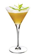 Julep Martini image