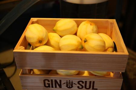 Gin Sul (Vicentina GmbH & Co. KG) image 11