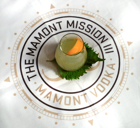 The Mamont Mission image 1