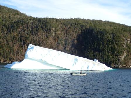 Harvesting icebergs image 9