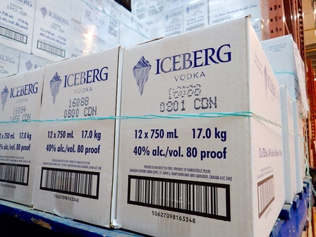 Harvesting icebergs image 14