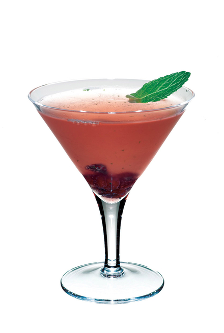 Cranberry & Mint Cocktail image