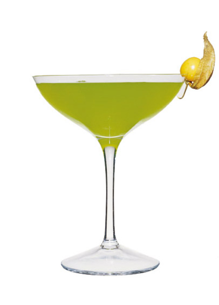 Sourpuss Martini image
