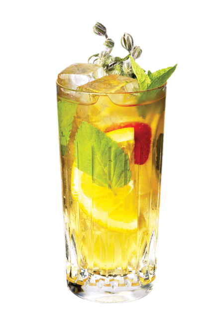 Difford's Fruit Cup No.1 (gin based & Pimm's Cup-like) image