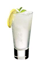 Gin Fizz image