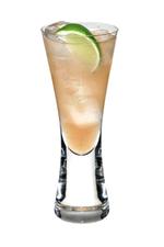 Gin Gin Mule image