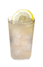 Gin Punch #1