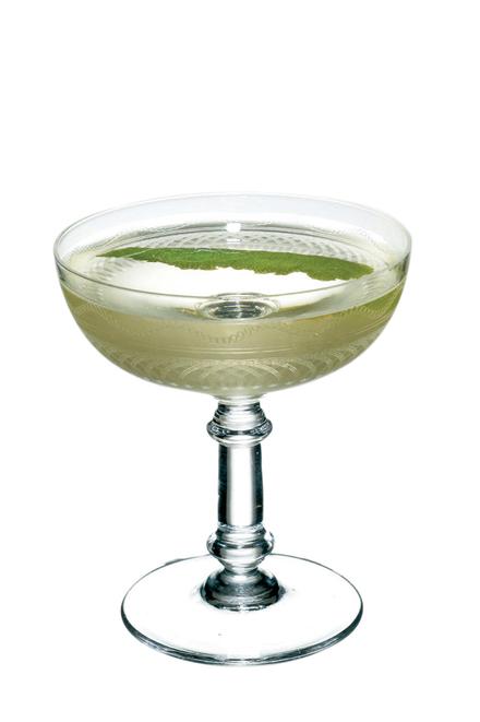 Princeton Martini image