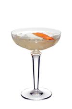 Snyder Martini