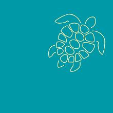 Tortuga Brands image