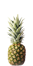 Pineapple (fresh) image